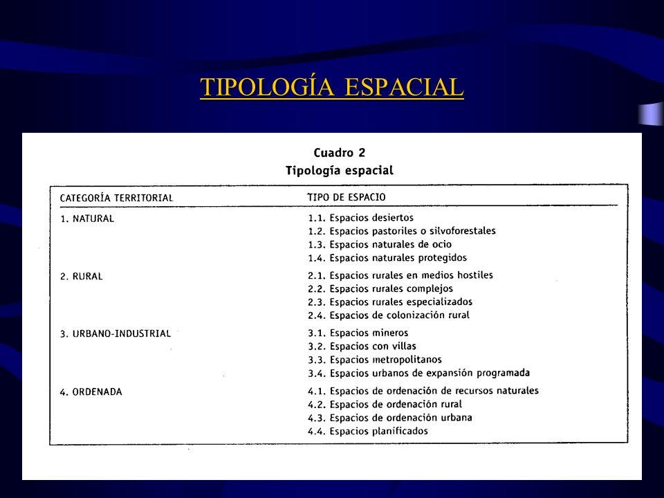 TIPOLOGÍA ESPACIAL