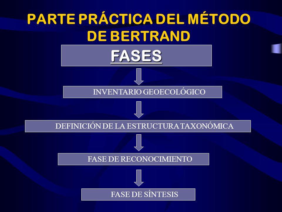 PARTE PRÁCTICA DEL MÉTODO DE BERTRAND