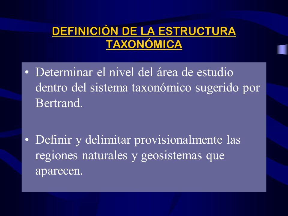 DEFINICIÓN DE LA ESTRUCTURA TAXONÓMICA