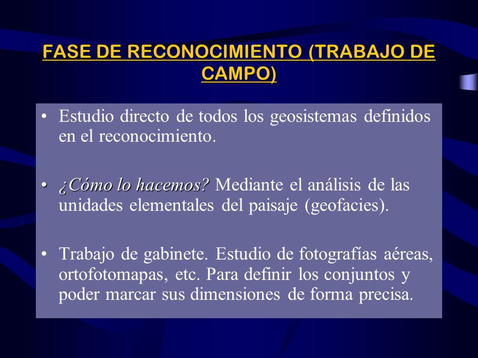 FASE DE RECONOCIMIENTO (TRABAJO DE CAMPO)