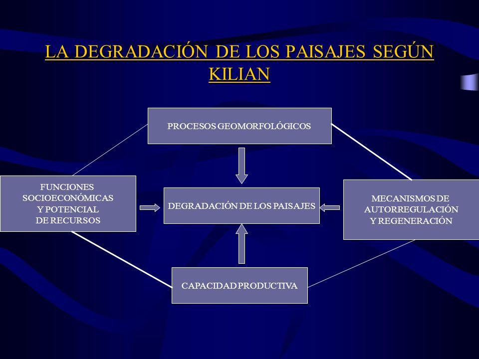 LA DEGRADACIÓN DE LOS PAISAJES SEGÚN KILIAN