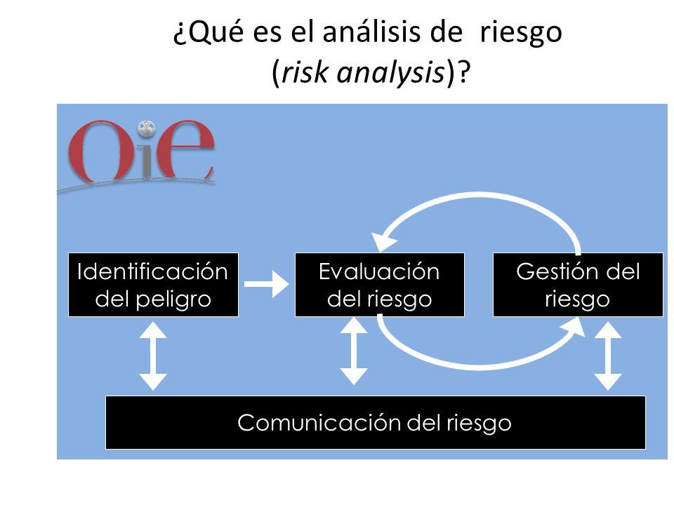 ¿Qué es el análisis de riesgo (risk analysis)