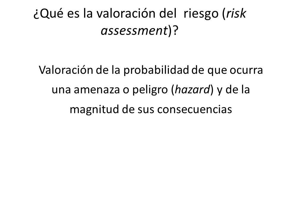 ¿Qué es la valoración del riesgo (risk assessment)