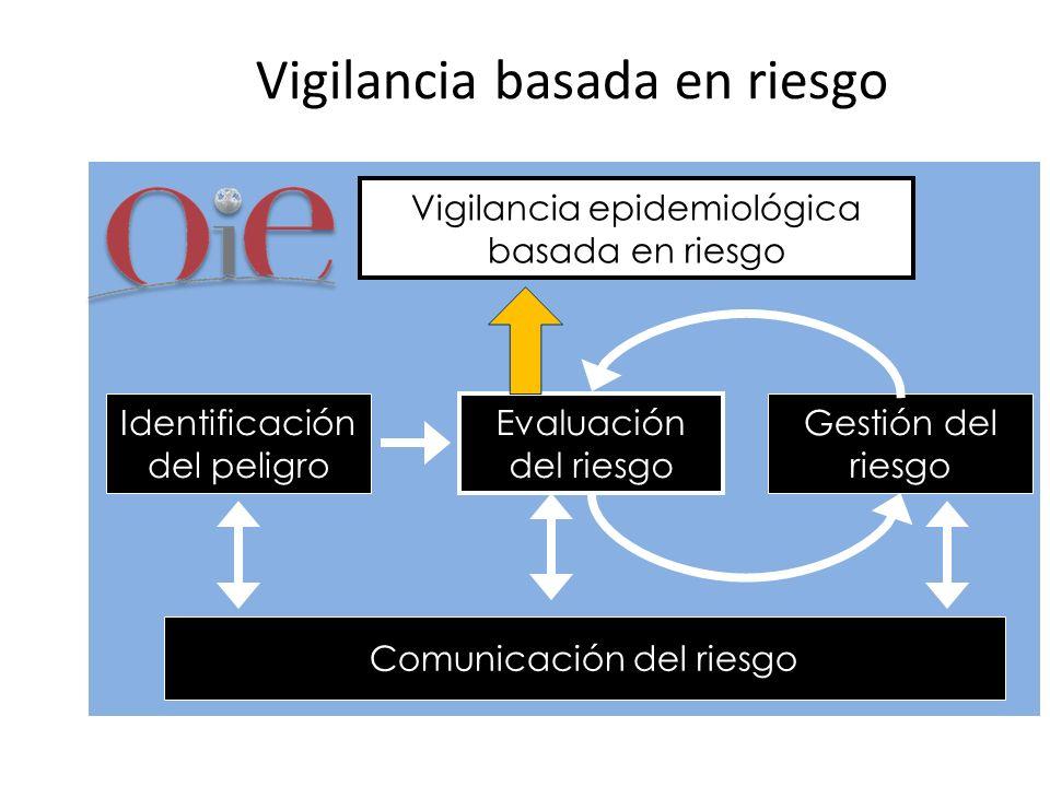 Vigilancia basada en riesgo