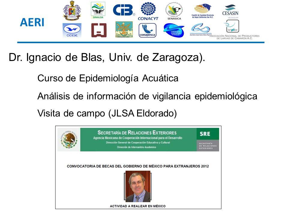 AERI Dr. Ignacio de Blas, Univ. de Zaragoza).