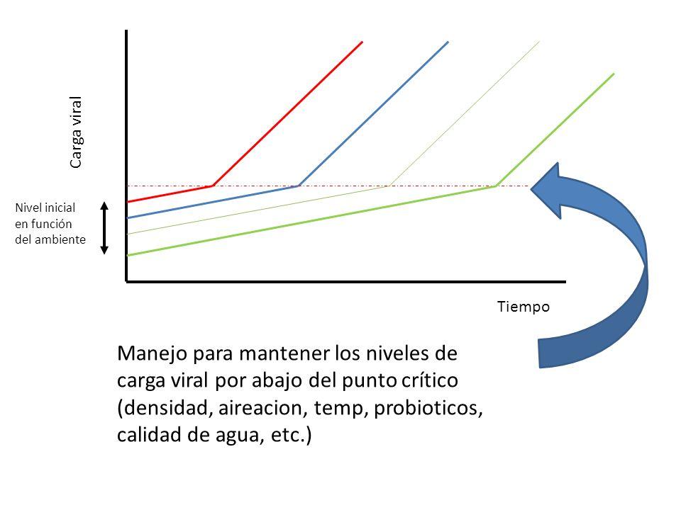 Carga viral Nivel inicial en función del ambiente. Tiempo.
