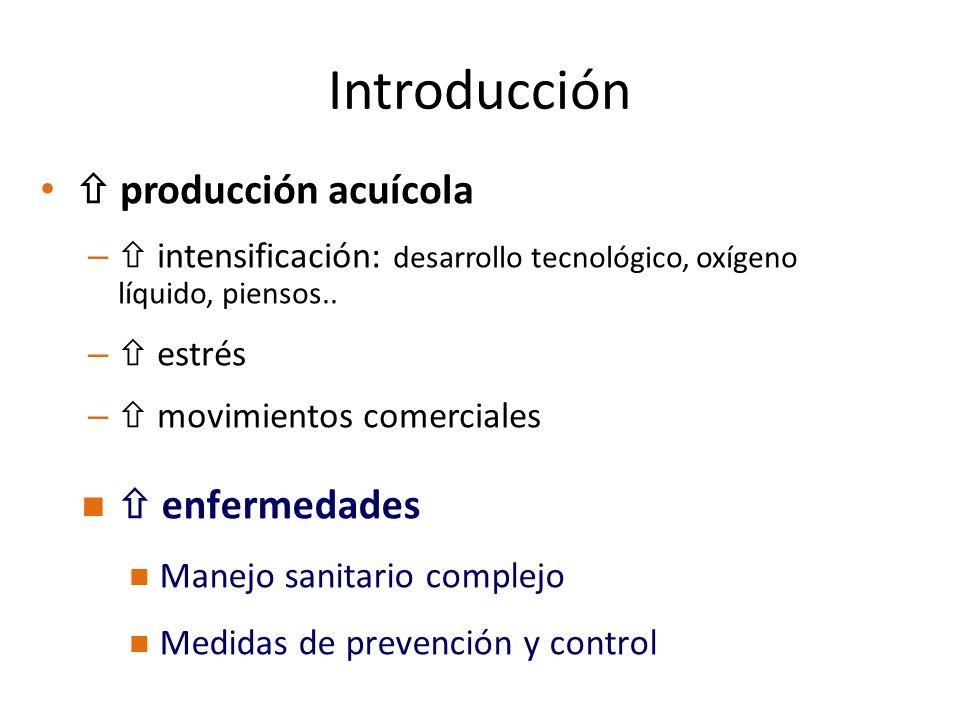 Introducción  producción acuícola  enfermedades