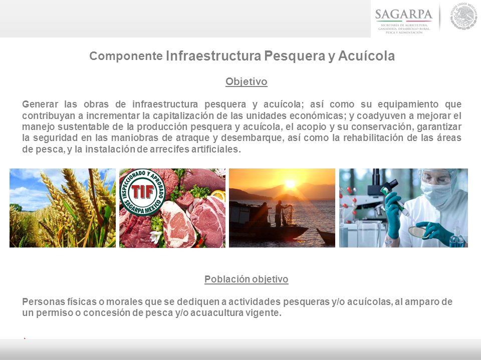 Componente Infraestructura Pesquera y Acuícola