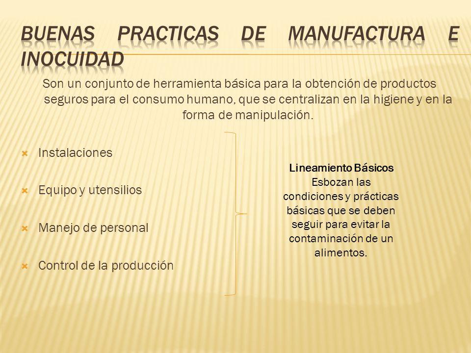 buenas practicas de manufactura e inocuidad