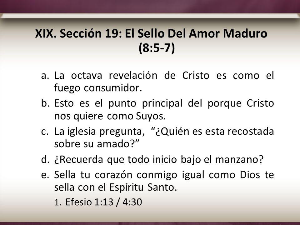 XIX. Sección 19: El Sello Del Amor Maduro (8:5-7)