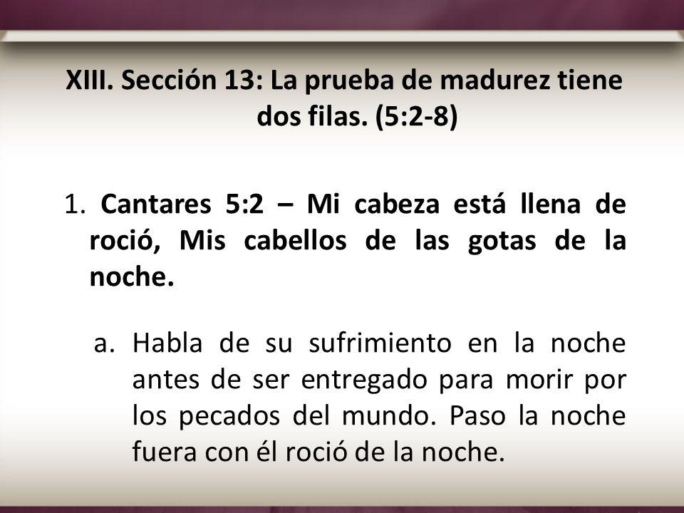 XIII. Sección 13: La prueba de madurez tiene dos filas. (5:2-8)