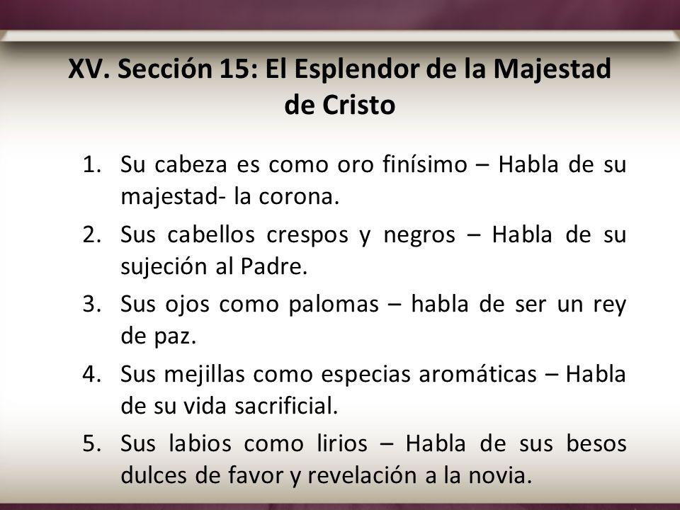 XV. Sección 15: El Esplendor de la Majestad de Cristo