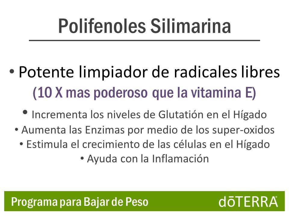 Polifenoles Silimarina