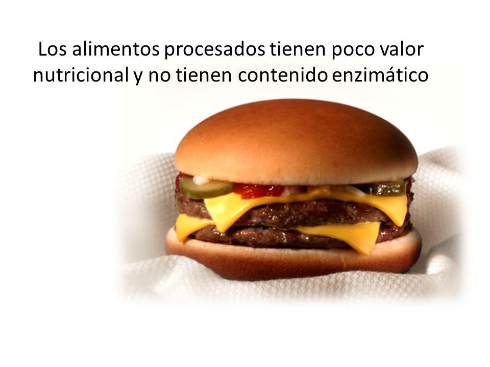Los alimentos procesados tienen poco valor nutricional y no tienen contenido enzimático