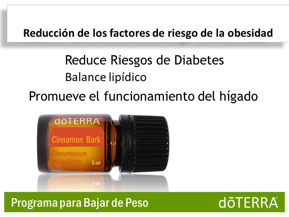 Reducción de los factores de riesgo de la obesidad