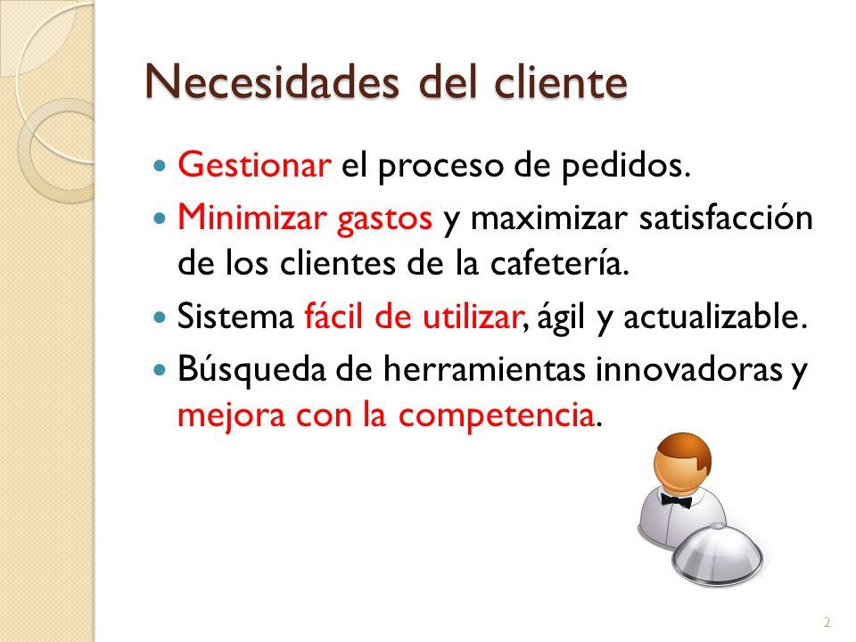 Necesidades del cliente