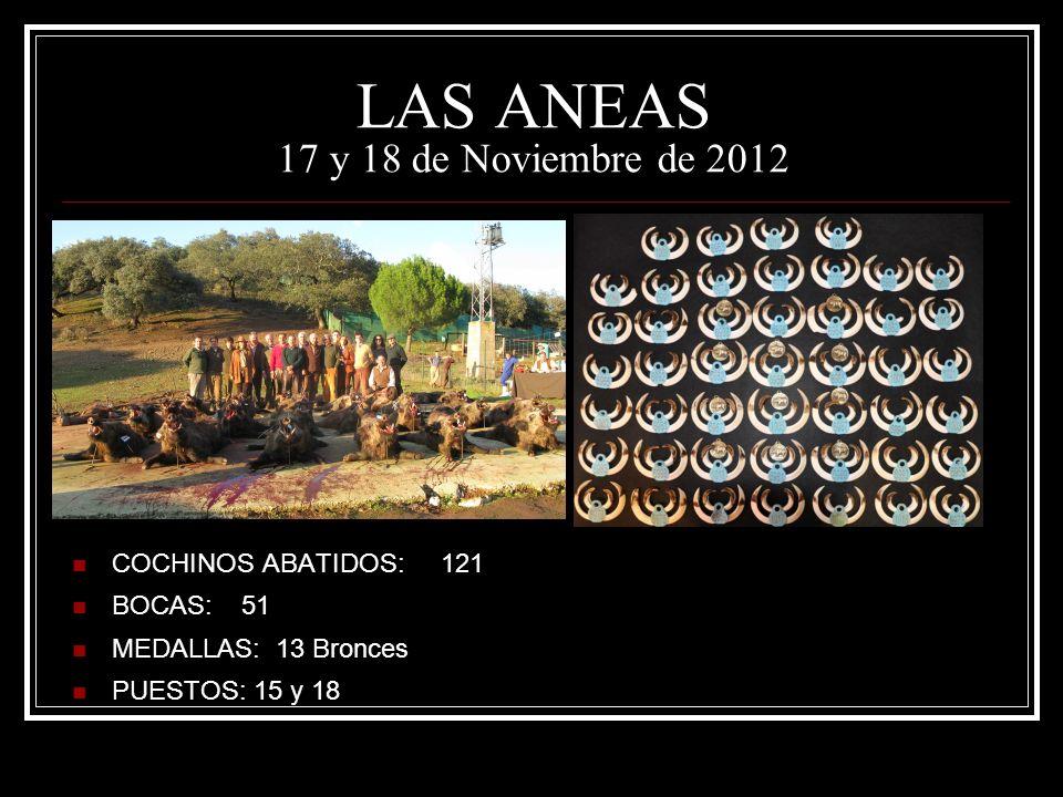 LAS ANEAS 17 y 18 de Noviembre de 2012