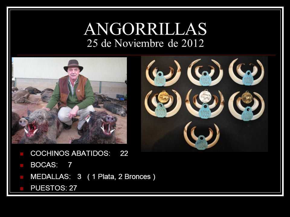 ANGORRILLAS 25 de Noviembre de 2012
