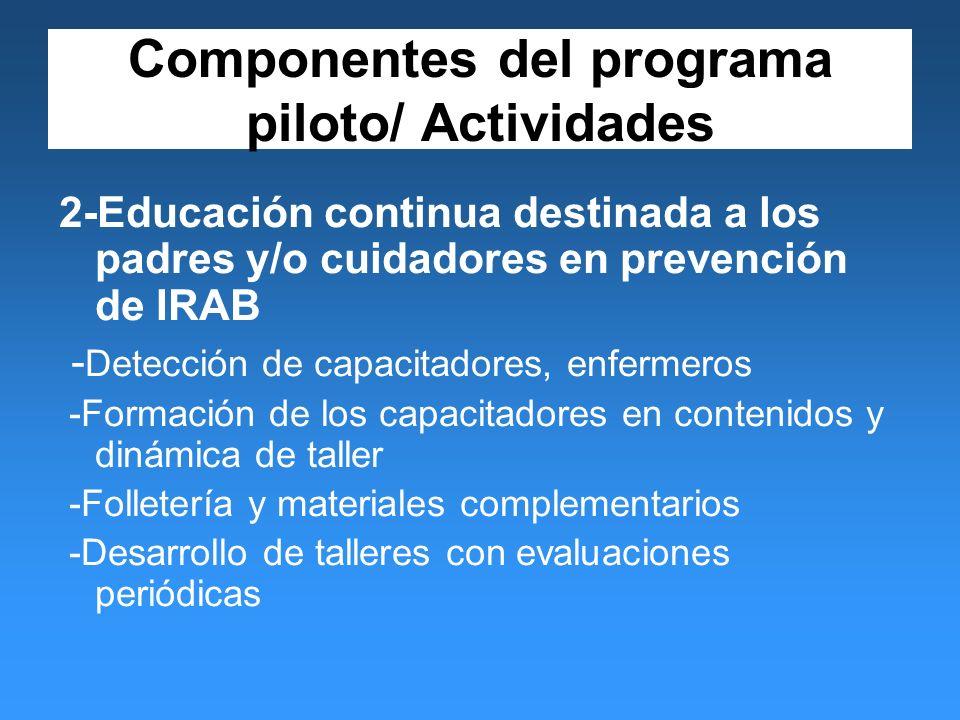 Componentes del programa piloto/ Actividades