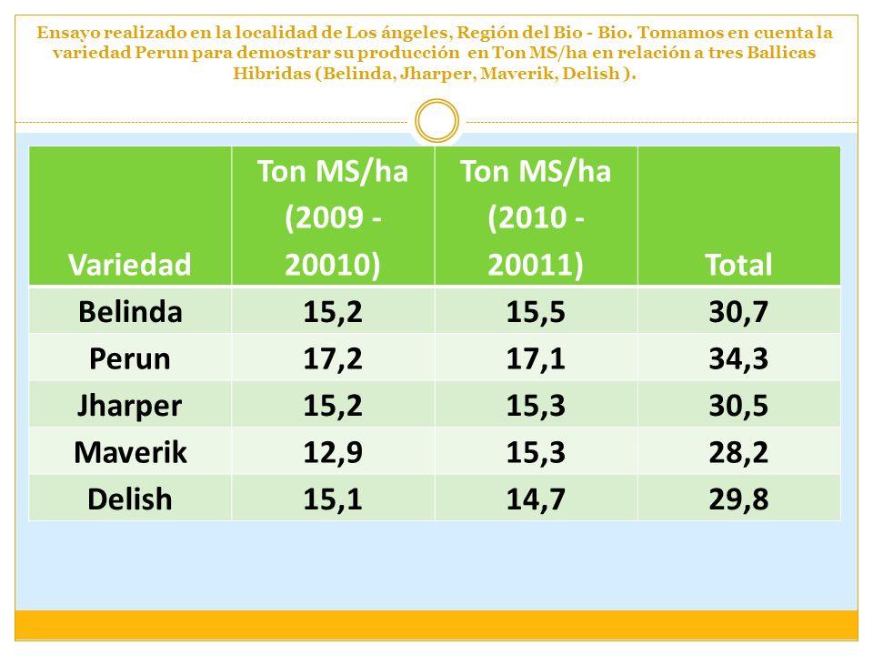 Variedad Ton MS/ha (2009 - 20010) Ton MS/ha (2010 - 20011) Total