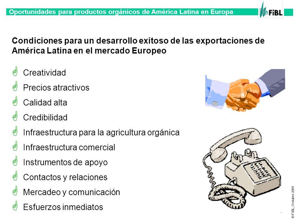 Condiciones para un desarrollo exitoso de las exportaciones de América Latina en el mercado Europeo