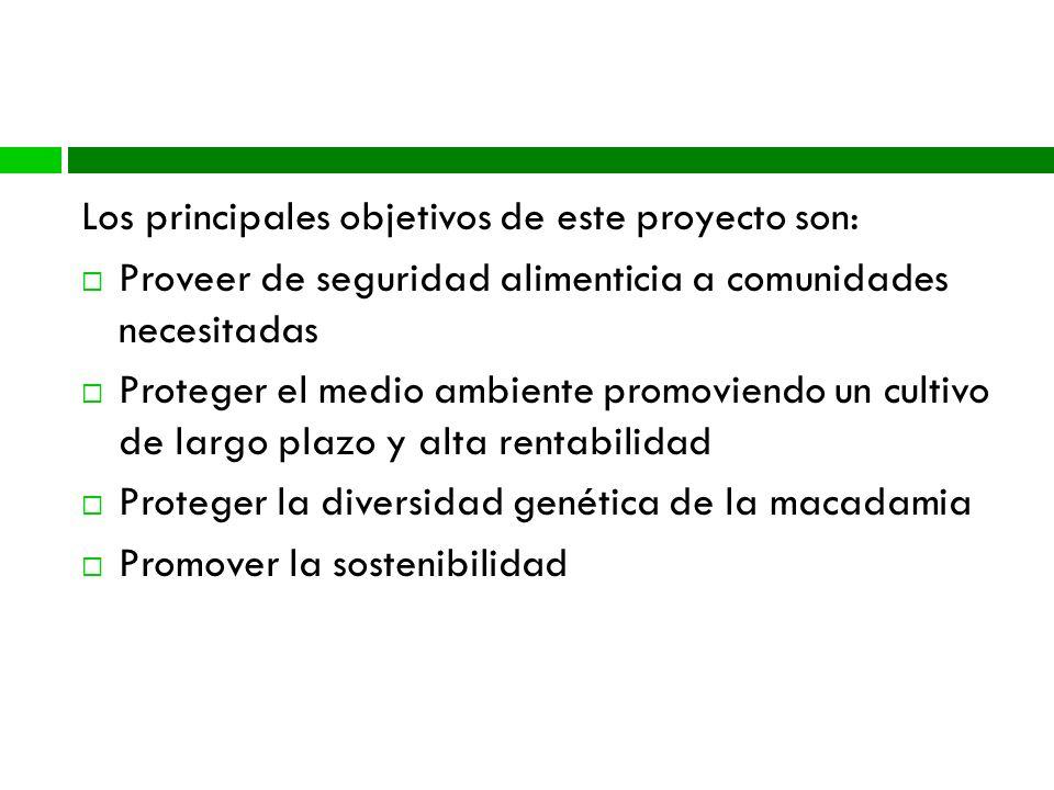 Metas del Proyecto Los principales objetivos de este proyecto son: