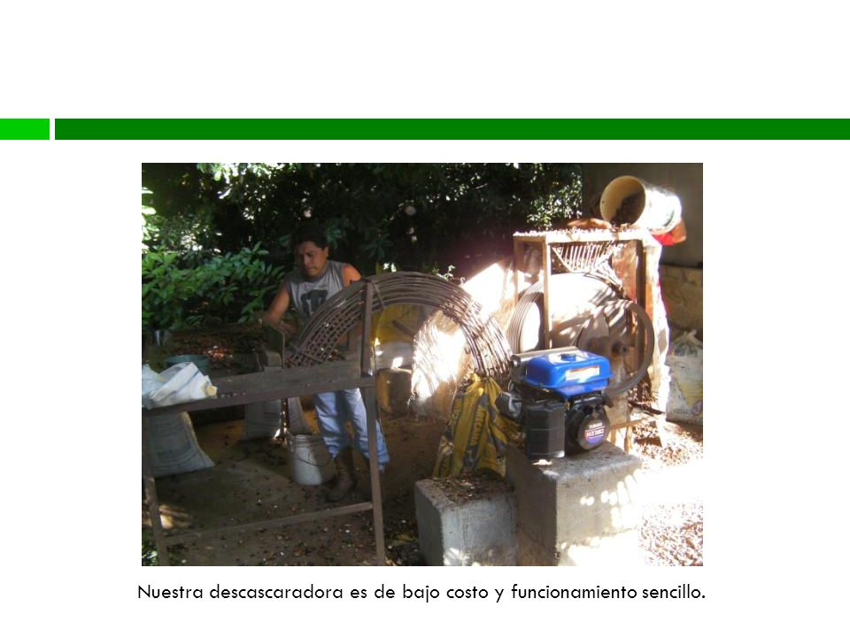 Nuestra descascaradora es de bajo costo y funcionamiento sencillo.