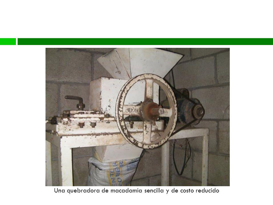 Una quebradora de macadamia sencilla y de costo reducido