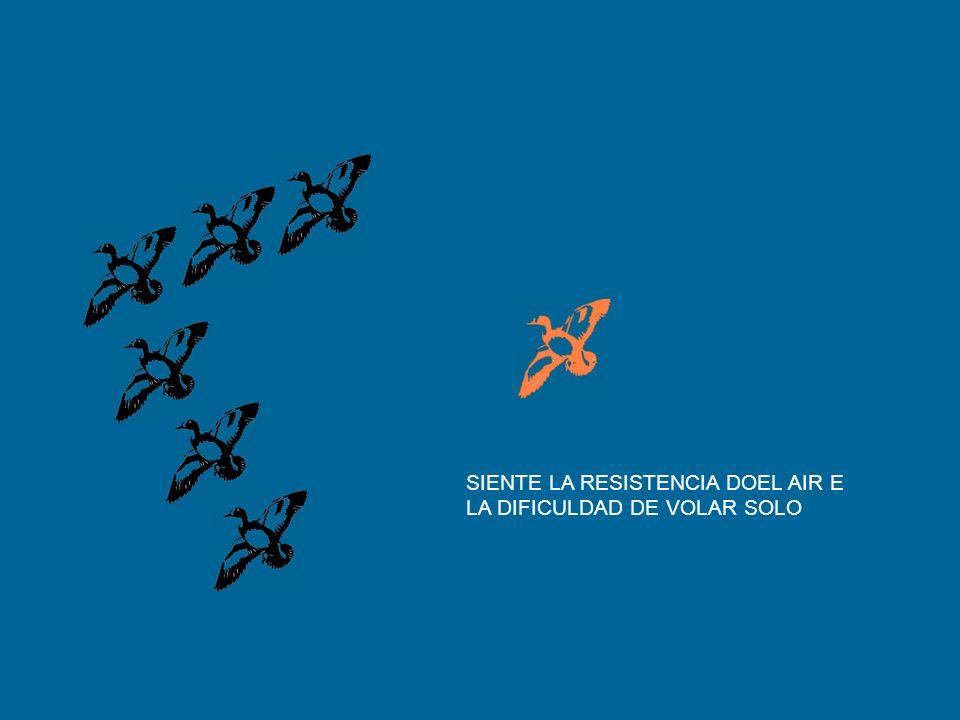 SIENTE LA RESISTENCIA DOEL AIR E