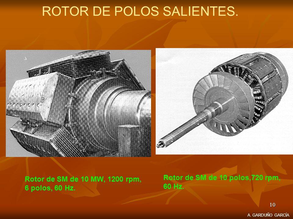 ROTOR DE POLOS SALIENTES.