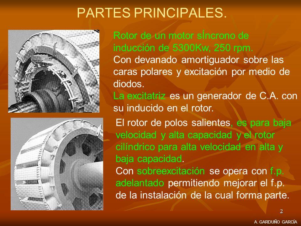 PARTES PRINCIPALES. Rotor de un motor sÍncrono de