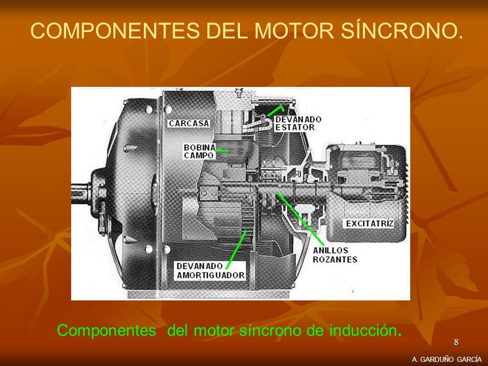 COMPONENTES DEL MOTOR SÍNCRONO.