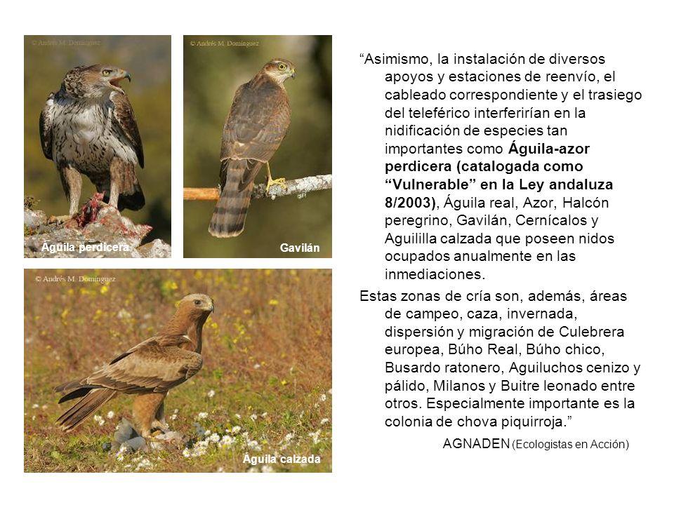 AGNADEN (Ecologistas en Acción)