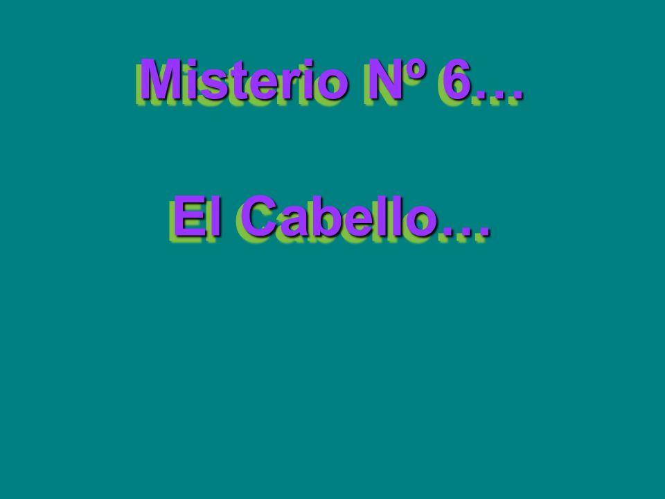 Misterio Nº 6… El Cabello…