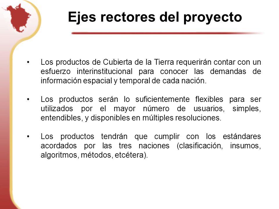Ejes rectores del proyecto