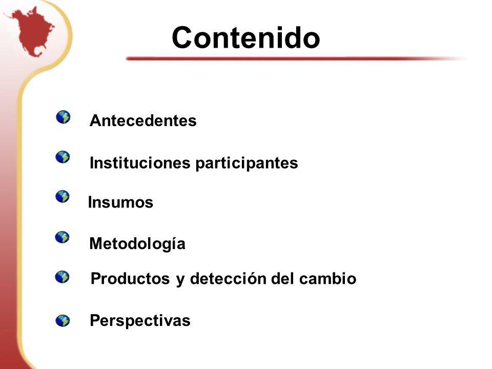 Contenido Antecedentes Instituciones participantes Insumos Metodología