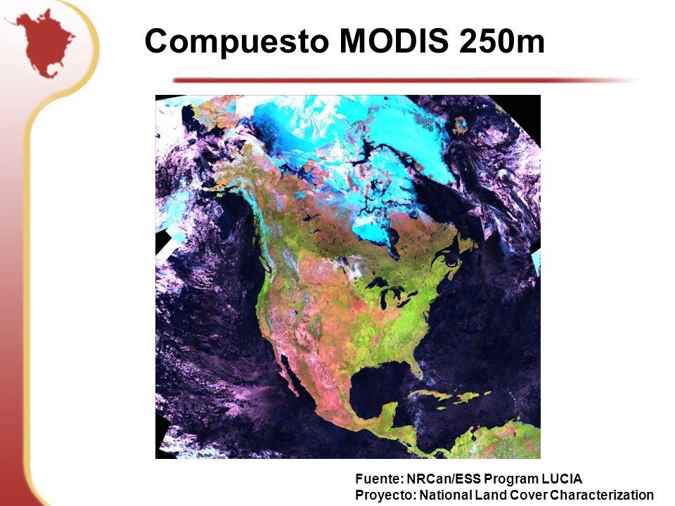 Compuesto MODIS 250m Fuente: NRCan/ESS Program LUCIA