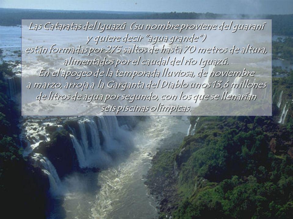 Las Cataratas del Iguazú (su nombre proviene del guaraní