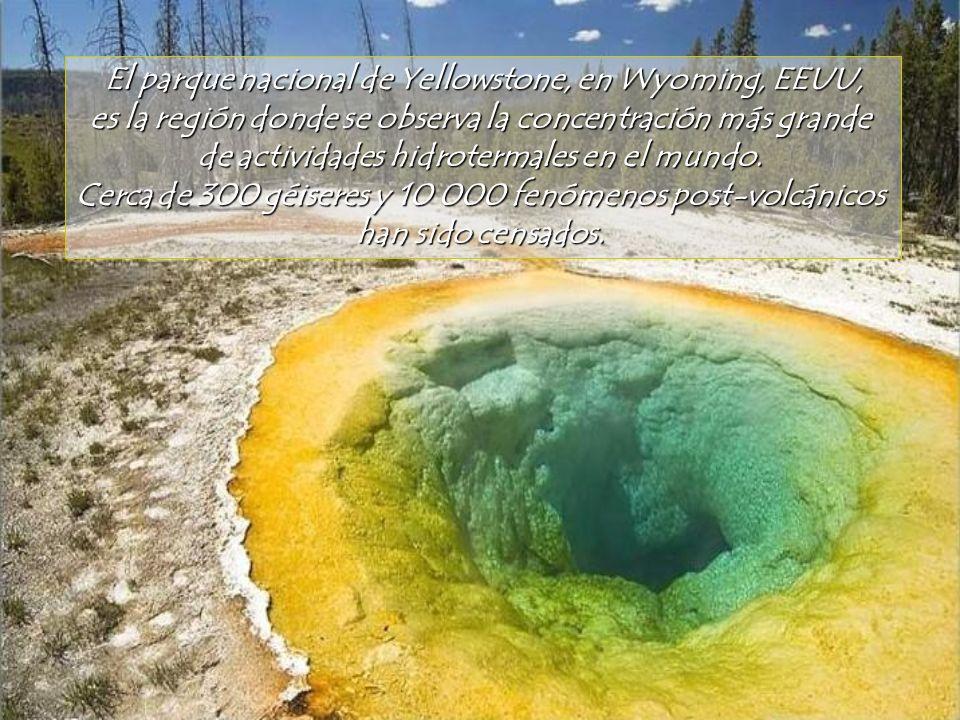 El parque nacional de Yellowstone, en Wyoming, EEUU,