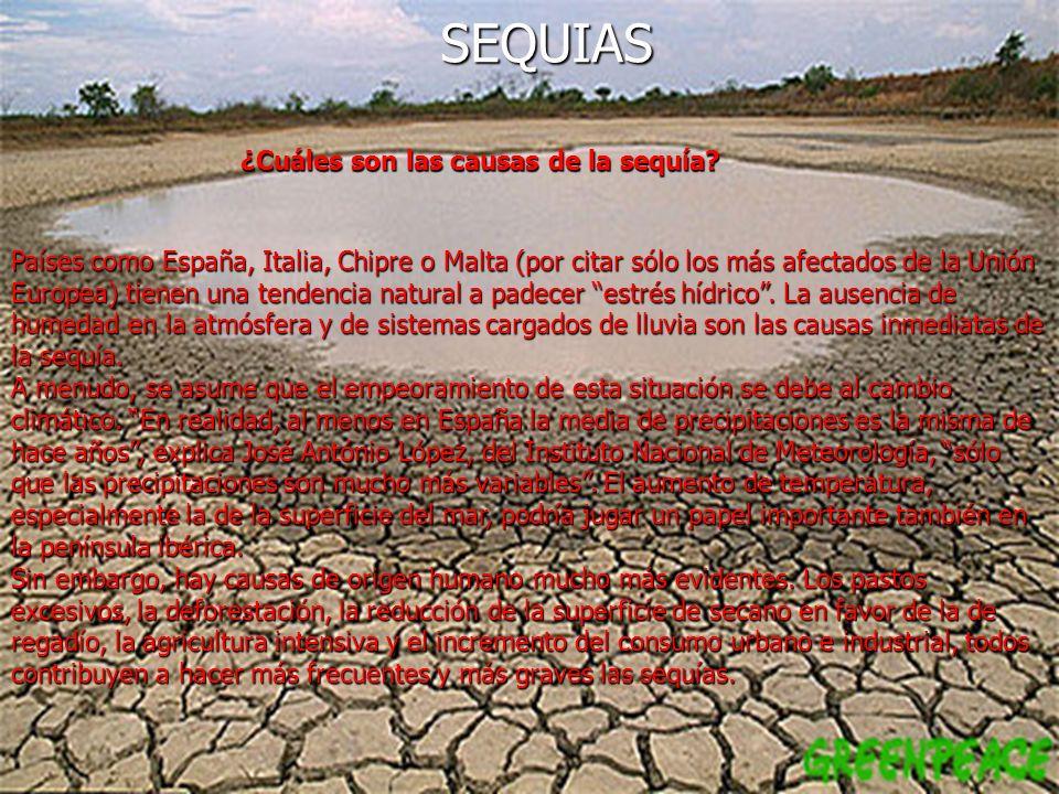 ¿Cuáles son las causas de la sequía