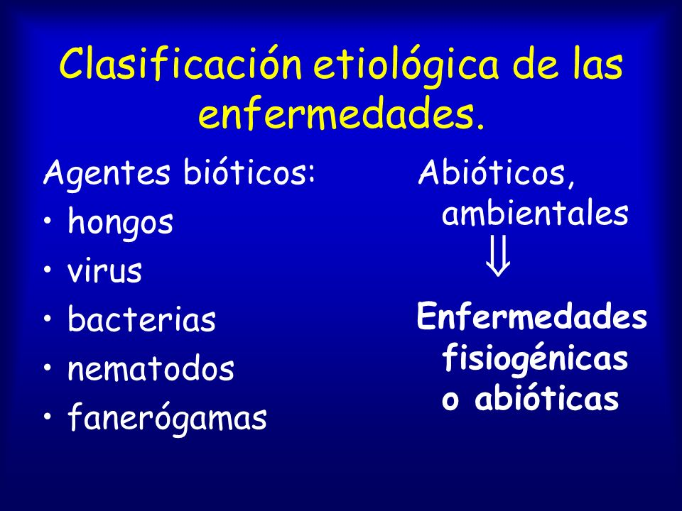 Clasificación etiológica de las enfermedades.