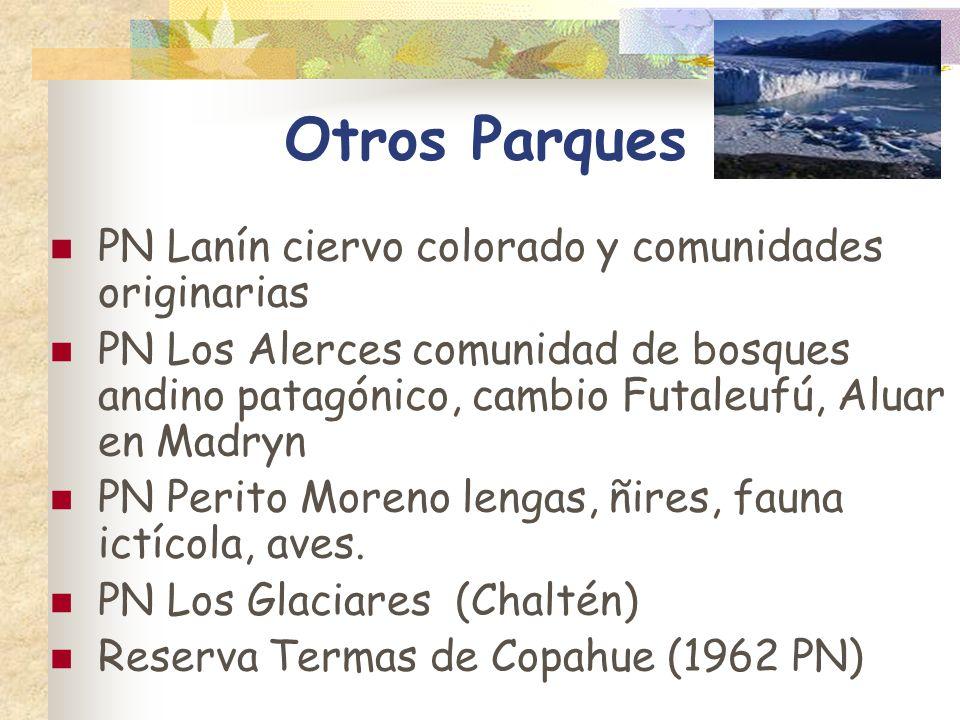 Otros Parques PN Lanín ciervo colorado y comunidades originarias