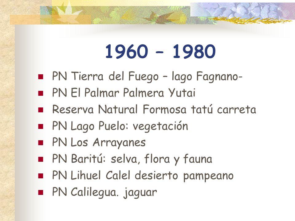 1960 – 1980 PN Tierra del Fuego – lago Fagnano-