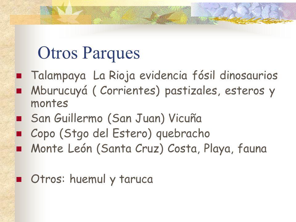 Otros Parques Talampaya La Rioja evidencia fósil dinosaurios
