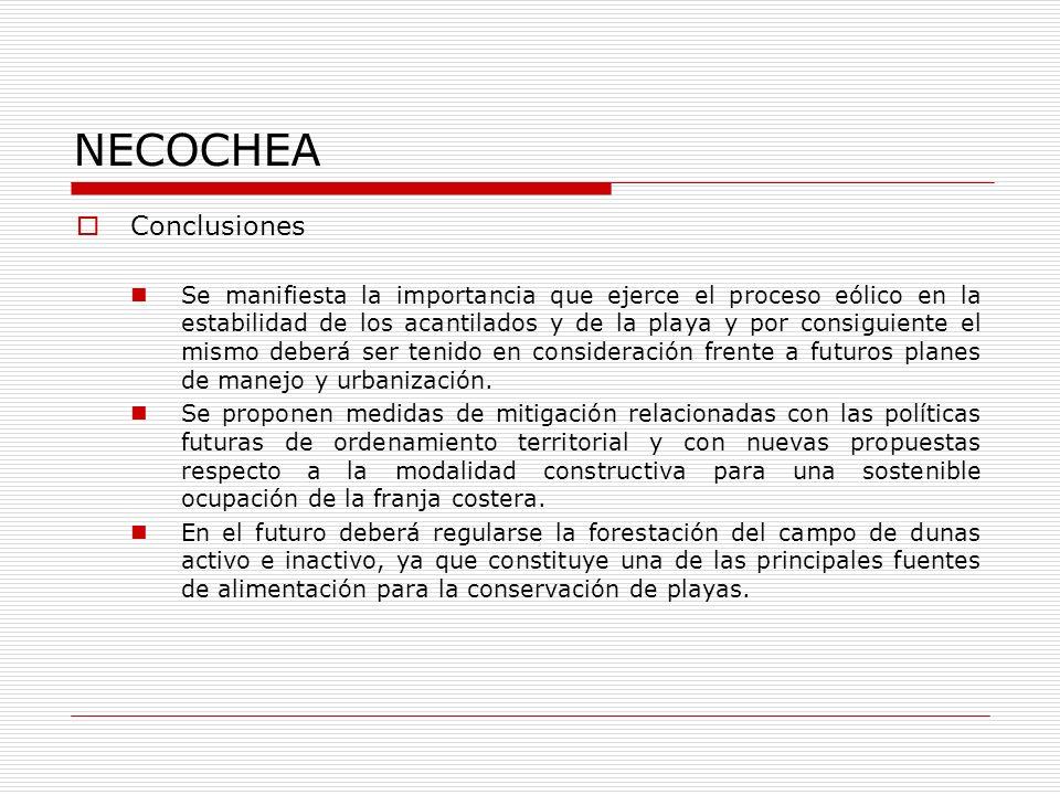 NECOCHEA Conclusiones