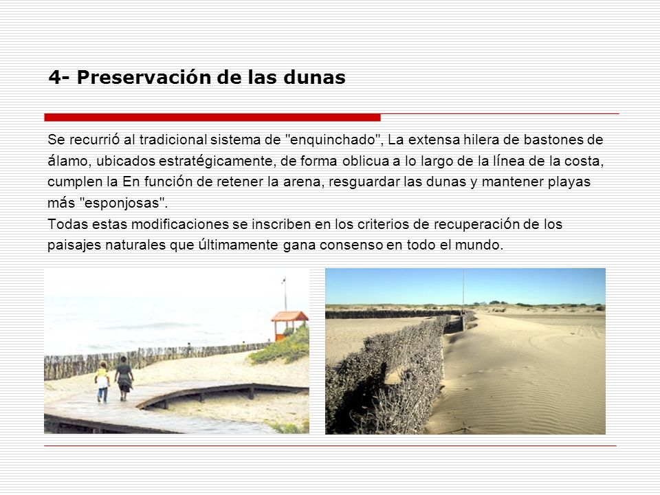 4- Preservación de las dunas