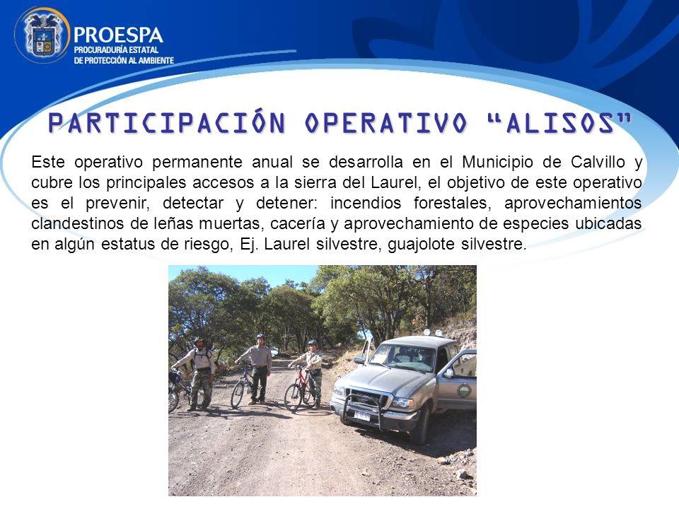 PARTICIPACIÓN OPERATIVO ALISOS