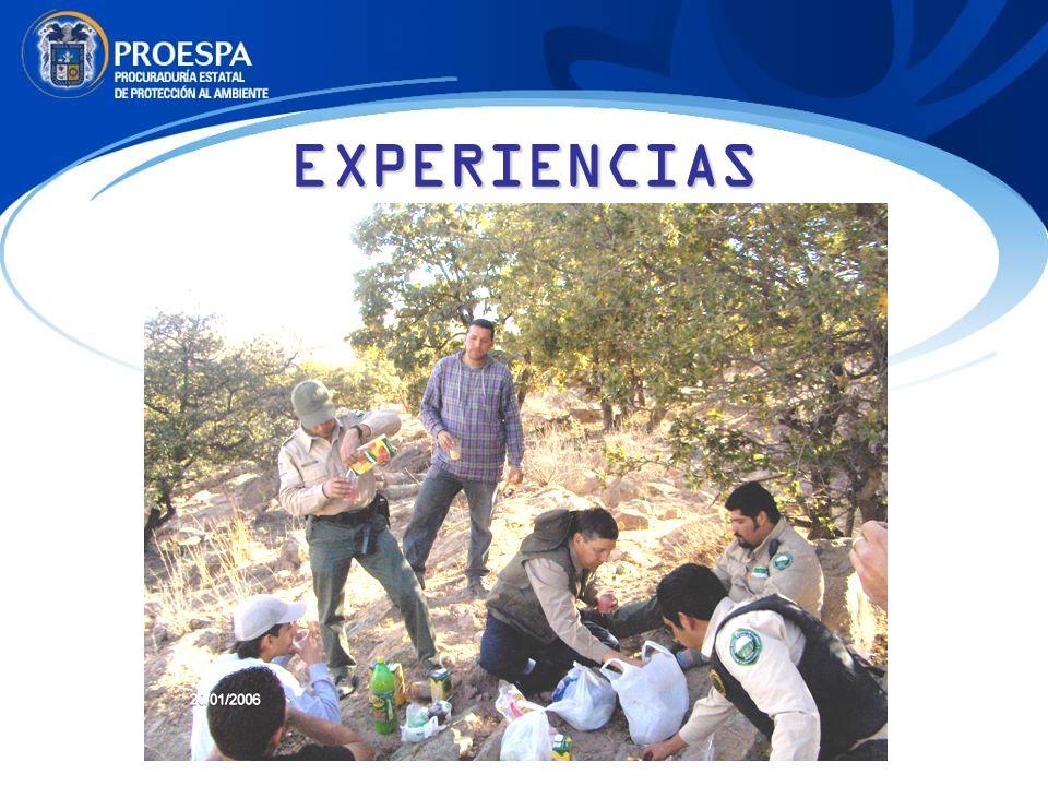 EXPERIENCIAS
