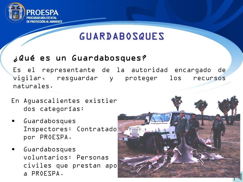 GUARDABOSQUES ¿Qué es un Guardabosques
