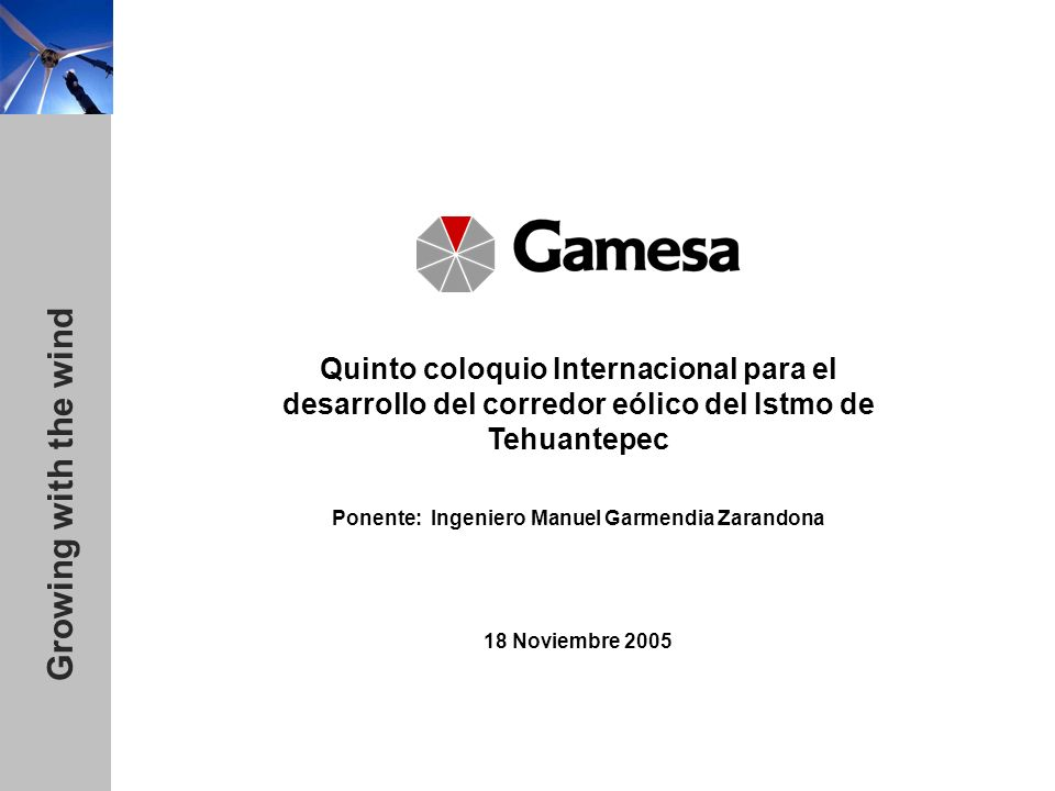Ponente: Ingeniero Manuel Garmendia Zarandona